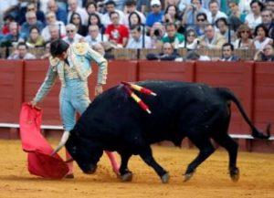 Perera_Sevilla_13